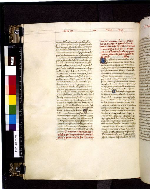 Text page from BL Harley 4431, f. 303v