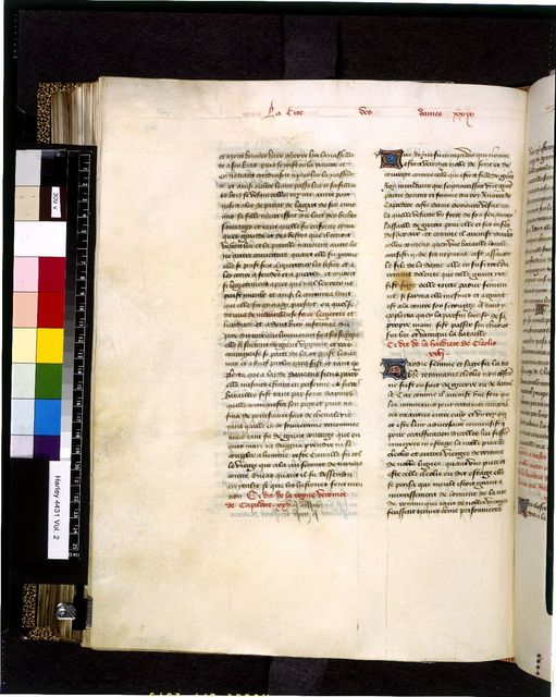 Text page from BL Harley 4431, f. 309v