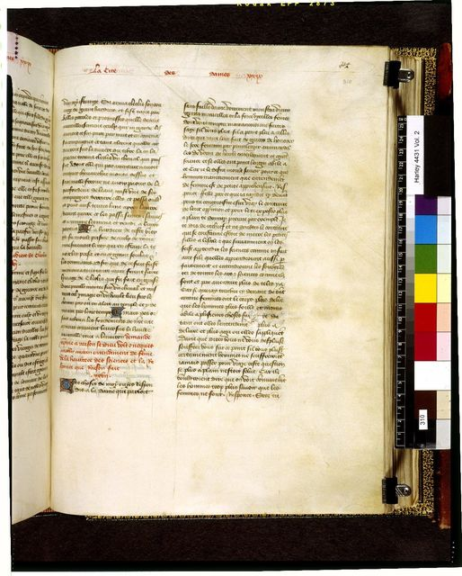 Text page from BL Harley 4431, f. 310
