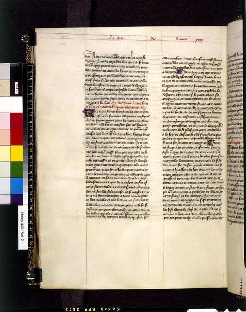 Text page from BL Harley 4431, f. 364v