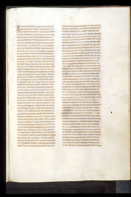 Text page from BL Royal 19 D I, f. 141