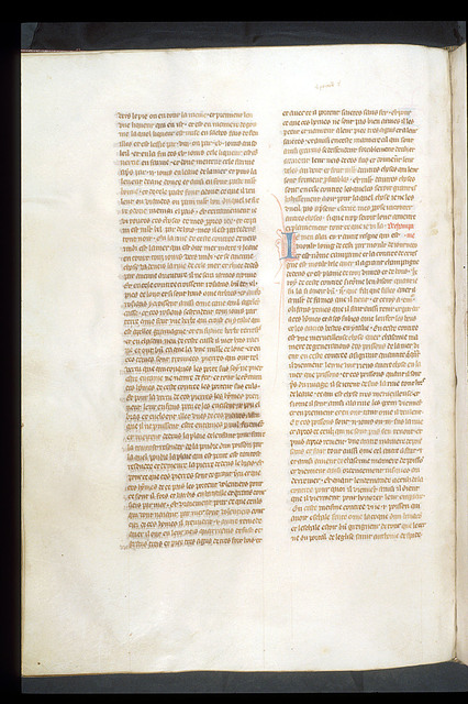 Text page from BL Royal 19 D I, f. 141v