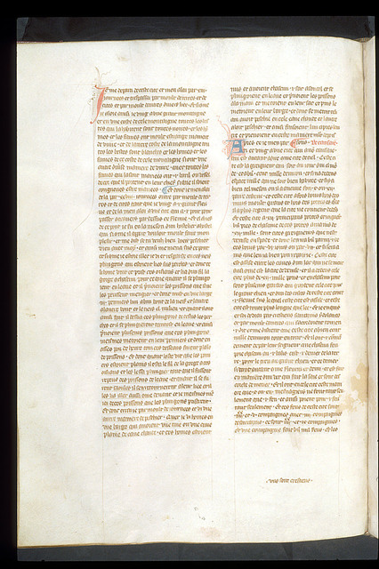 Text page from BL Royal 19 D I, f. 143v