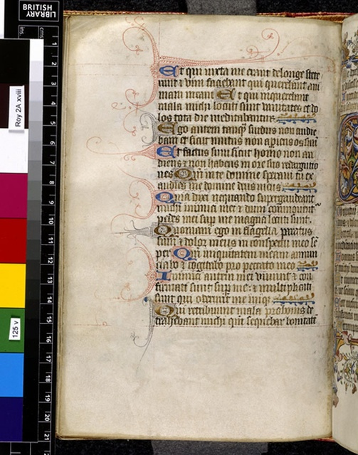 Text page from BL Royal 2 A XVIII, f. 125v