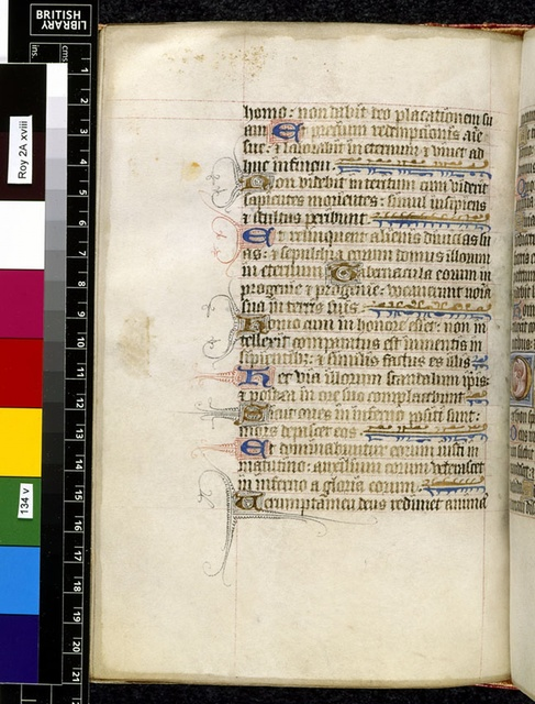 Text page from BL Royal 2 A XVIII, f. 134v