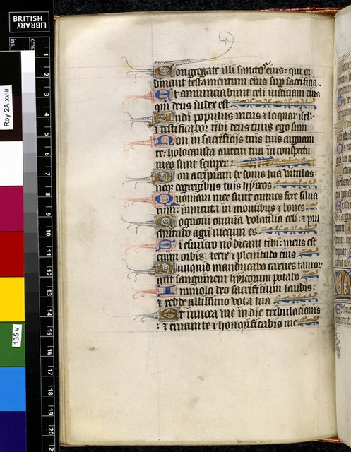 Text page from BL Royal 2 A XVIII, f. 135v