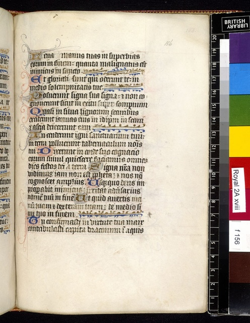 Text page from BL Royal 2 A XVIII, f. 156