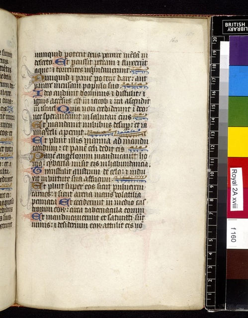 Text page from BL Royal 2 A XVIII, f. 160