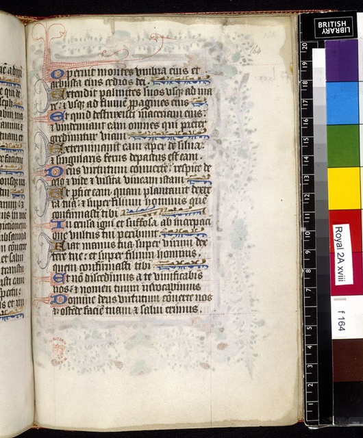 Text page from BL Royal 2 A XVIII, f. 164