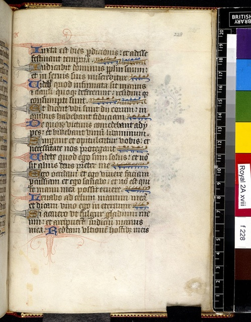 Text page from BL Royal 2 A XVIII, f. 228
