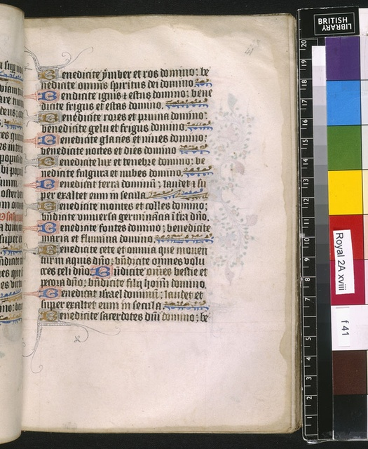 Text page from BL Royal 2 A XVIII, f. 41