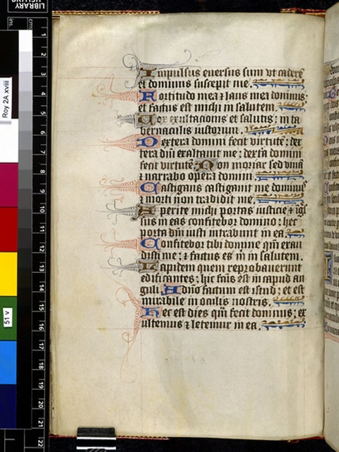 Text page from BL Royal 2 A XVIII, f. 51v