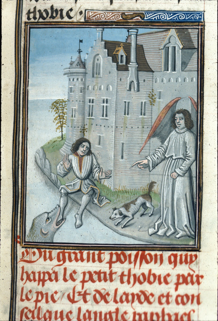 Tobias from BL Royal 15 D I, f. 23