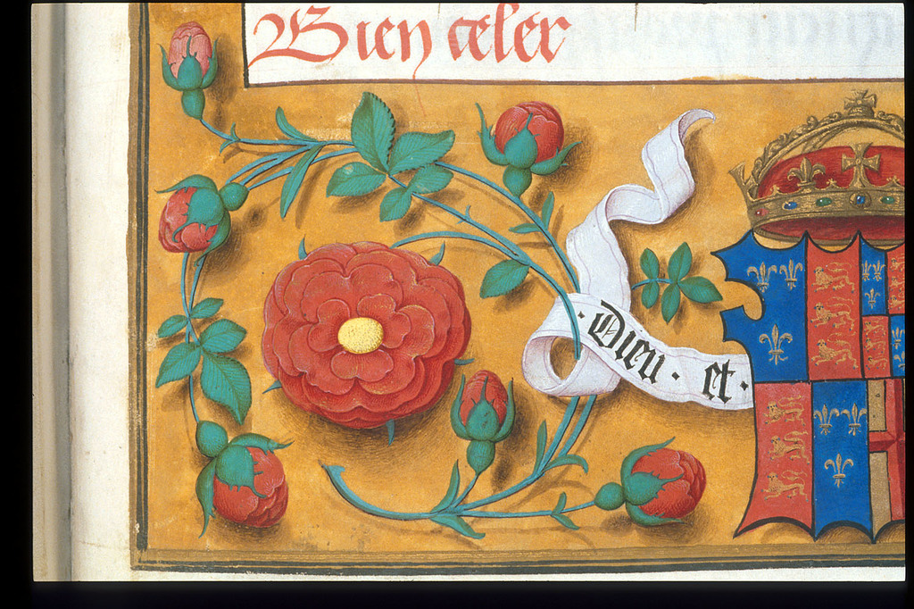 Tudor rose from BL Royal 16 F II, f. 188