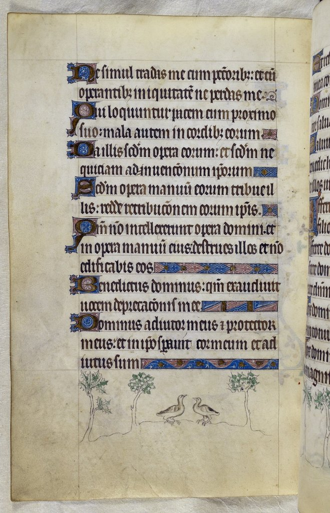 Turtle-doves from BL Royal 2 B VII, f. 114v