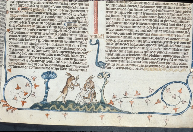 Two rabbits from BL Royal 10 E IV, f. 60