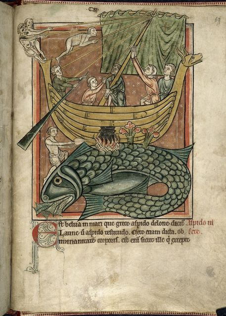 Whale from BL Harley 4751, f. 69