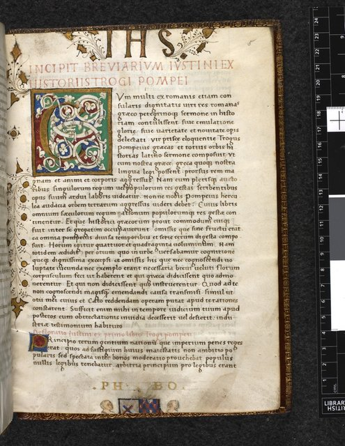 White vine initial from BL Harley 2762, f. 5