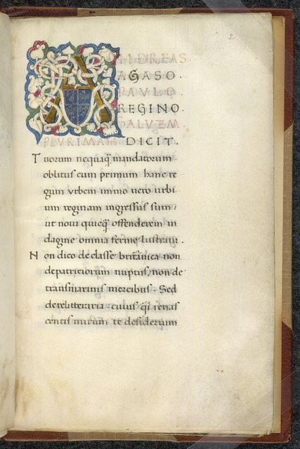 White wine initial from BL Sloane 2378, f. 2