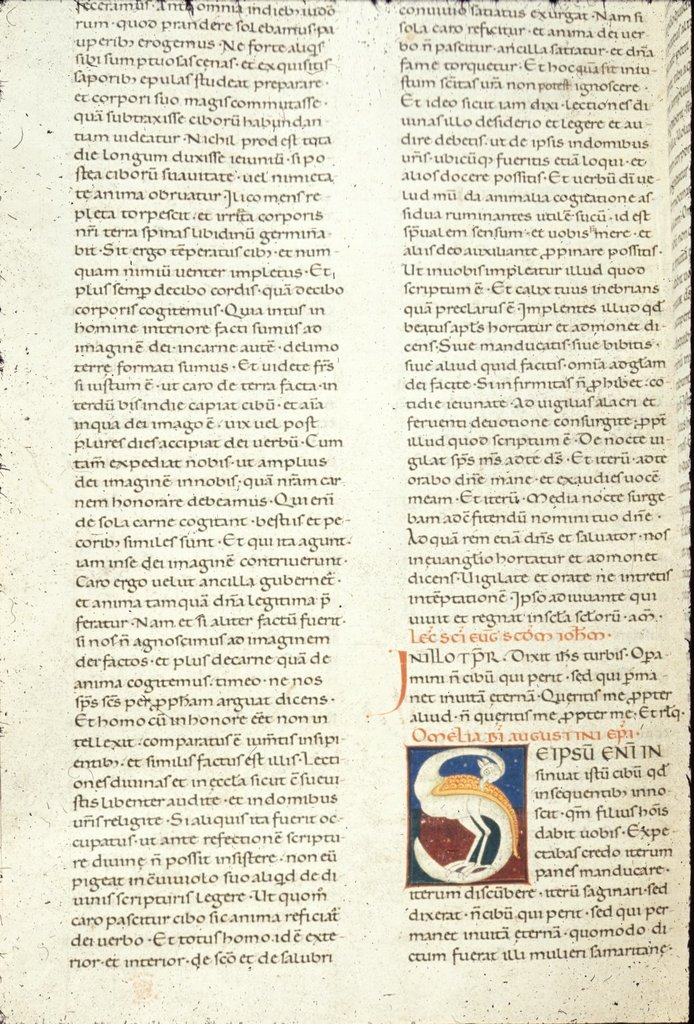Zoomorphic initial from BL Harley 7183, Vol. 2, f. 224v