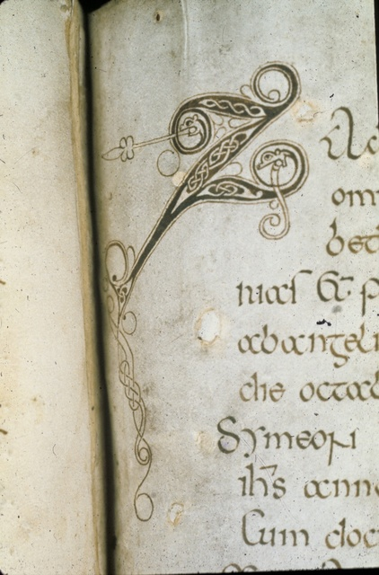 Zoomorphic initial from BL Royal 1 E VI, f. 42