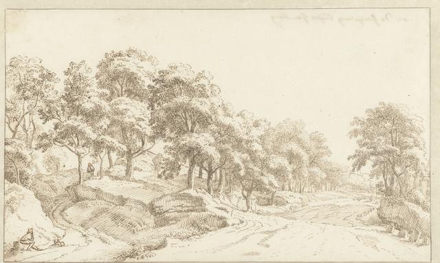 Brede weg in een landschap met bomen en gesteente bij Hamburg