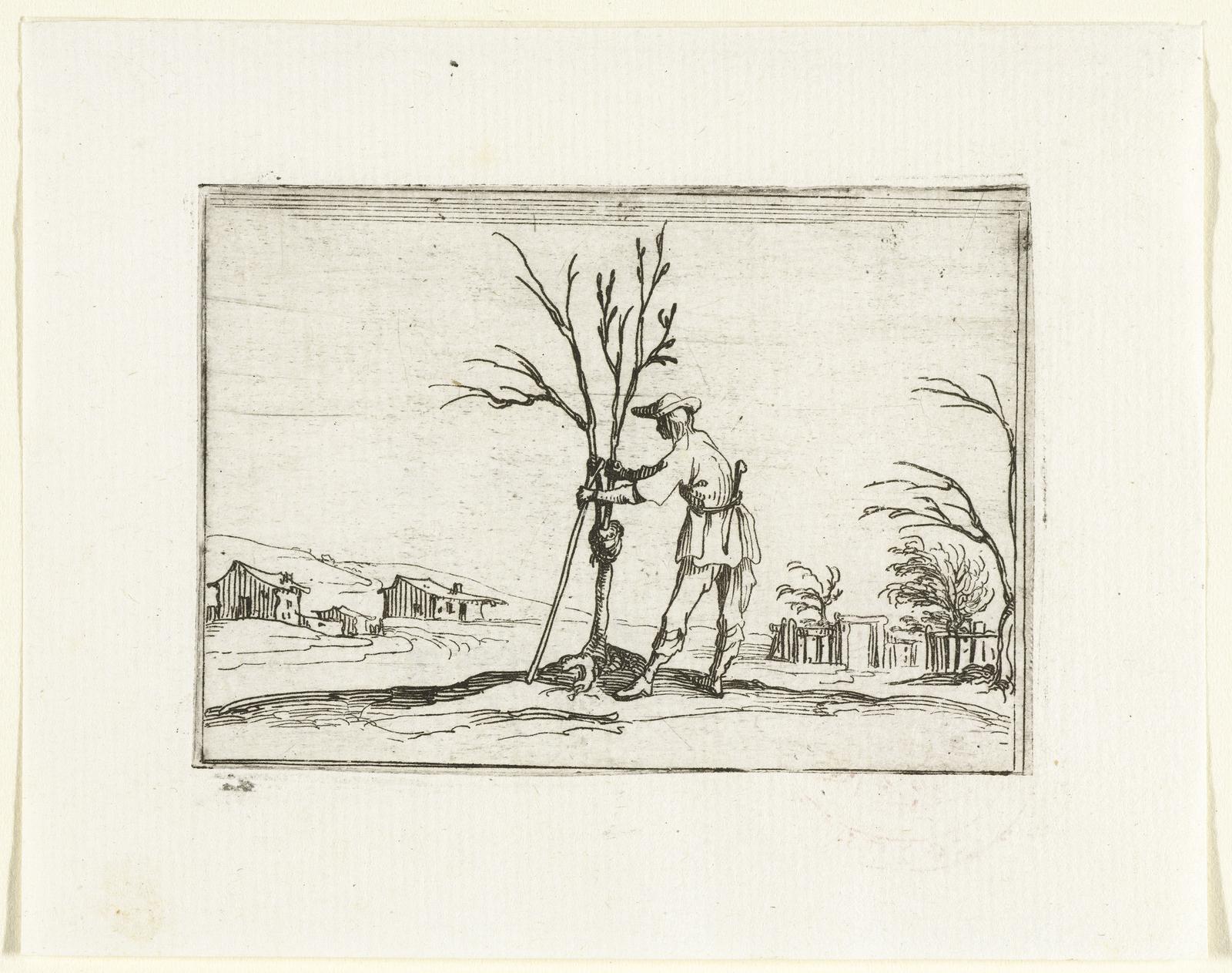 Een tuinman verzorgt een jonge boom