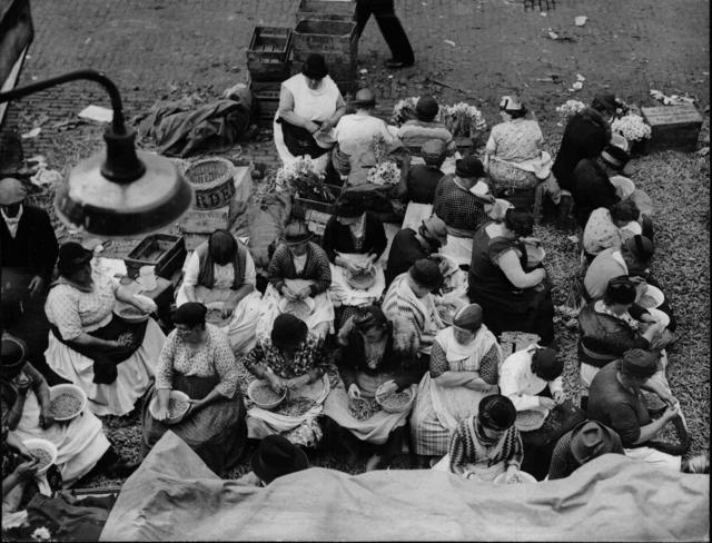 Erbsen-Saison auf Londons Gemüse-Markt im Covent Garden Eine Menge von Frauen sitzt da und holt die Bohnen aus den Schoten