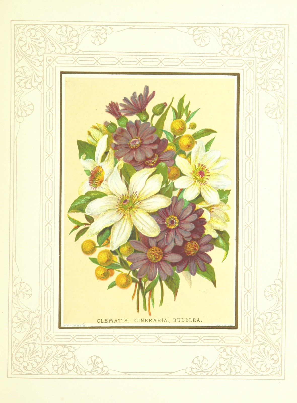 Flora From Floral Poetry And The Language Of Flowers With Coloured