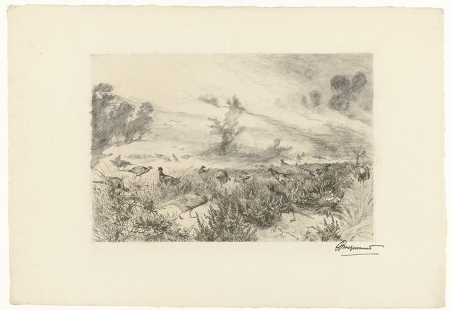 Heidelandschap met fazanten