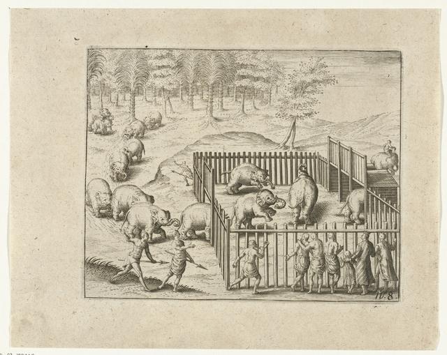 Jacht op olifanten te Pegu, 1604