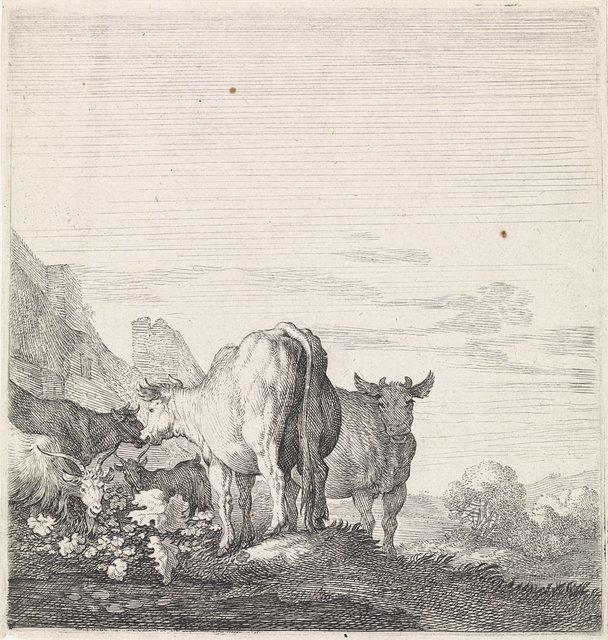Koeien en geiten in een landschap met huizen