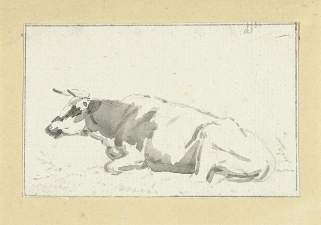 Liggende koe, naar links