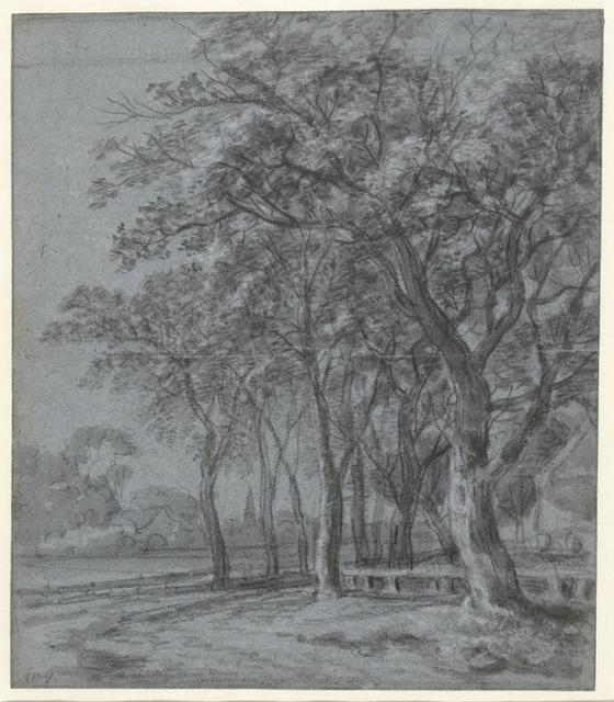 Pad met bomen langs het omheinde erf van een huis