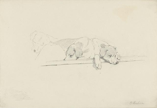 Schets van drie slapende honden