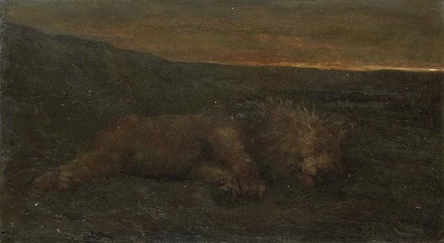 Slapende leeuw bij nacht