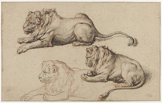 Studieblad met drie liggende leeuwen
