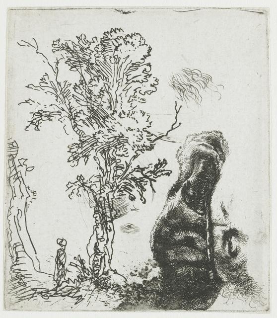 Studieblad met een landschap met een boom, en het voorhoofd van Rembrandt, met een fluwelen baret