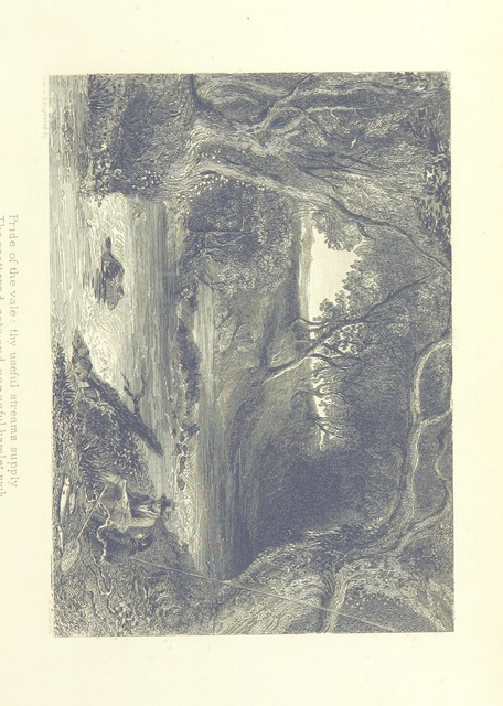 """upside-down from """"The Works of Samuel Taylor Coleridge. Prose and verse, etc"""""""