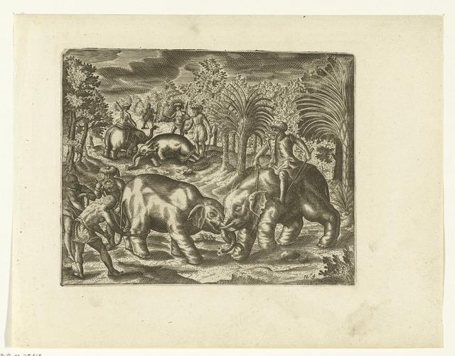 Vangen en temmen van olifanten op Pattani, 1602
