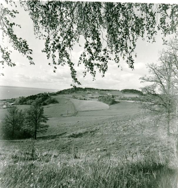 Varpa Skans. Vista kulle och gårdarna på dess sluttning.