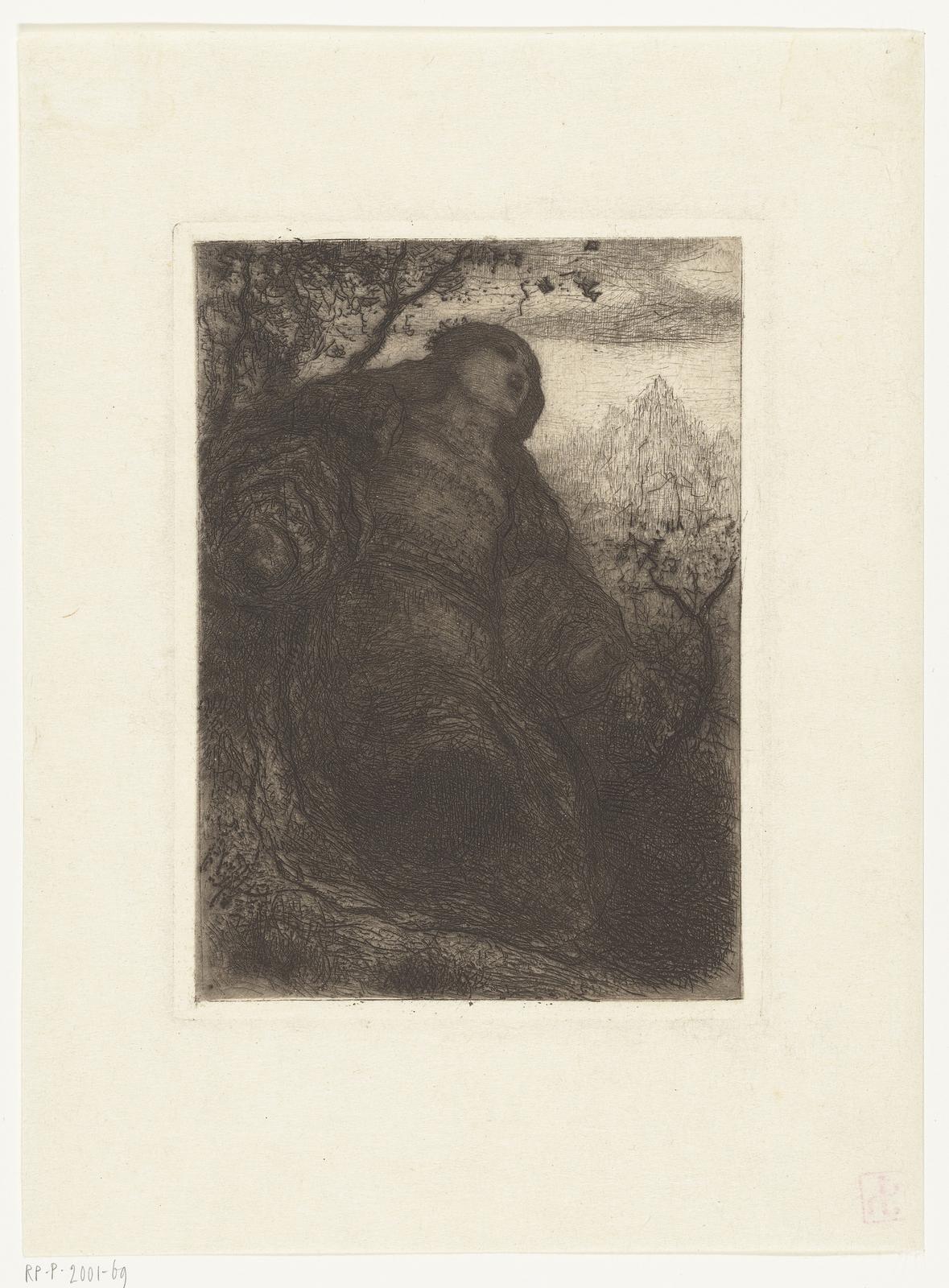 Vrouw onder een boom